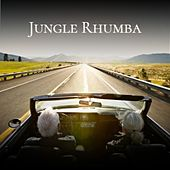 Jungle Rhumba by Jim Reeves, Agustin Lara, Bill Haley, Ramon Veloz, Astrud Gilberto, Willie Nelson, Caterina Valente, Kathy Kirby, Frankie Avalon, Edmundo Ros