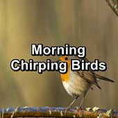 Morning Chirping Birds by Spa Relax Music