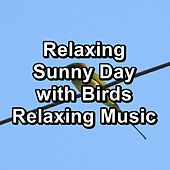 Relaxing Sunny Day with Birds Relaxing Music di Yoga Tribe