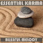 Blissful Melody (Instrumental) de Essential Band