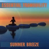 Summer Breeze de Essential Band