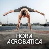Hora Acrobática von Various Artists