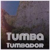 Tumba Tumbador by Fausto Papetti, Enrique Guzman, Los Panchos, Willie Nelson, Beny More, Claude Francois, Don Gibson, Mantovani Orchestra, Michael Holliday, Orquesta America