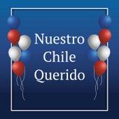 Nuestro Chile Querido de Various Artists