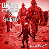 Possibly? by Wise Intelligent