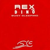 Busy Sleeping by Rex