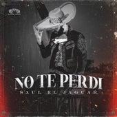 No Te Perdi by Saul