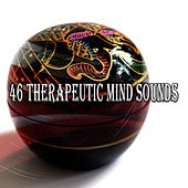46 Therapeutic Mind Sounds by Classical Study Music (1)
