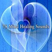 75 Mind Healing Sounds de Meditation Spa