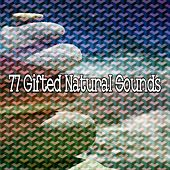 77 Gifted Natural Sounds von Yoga