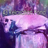 43 Relaxation Pond de Lullaby Land