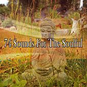 74 Sounds for the Soulful von Yoga