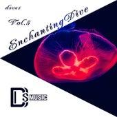 Enchanting Dive, Vol.5 by Various Artists