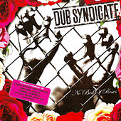 No Bed of Roses by Dub Syndicate