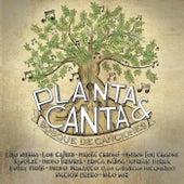 Bosque de Canciones de La Planta