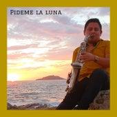 Pideme la luna (Versión instrumental) de Hugo Guzman Music