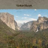 Veneracion by Anibal Troilo, Don Gibson, Luis Aguile, Trio Matamoros, The Crew Cuts, The Pyramids, Manuel Vallejo, Doris Day, Julio Jaramillo