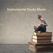Instrumental Study Music de Various Artists