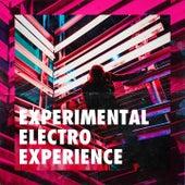 Experimental electro experience de Vasilis Ginos, Ordinary People, GWB70, Noah, Jake Bradford-Sharp, Skyward, Astra Kelly, G.L.O.W., The Alpha Ceti Orchestra, Dionvox