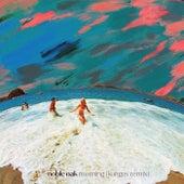 Morning (Kongos Remix) by Noble Oak