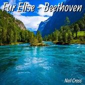Fur Elise - Beethoven de Neil Cross