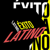 Exito Latino von Various Artists