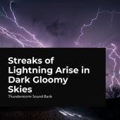 Streaks of Lightning Arise in Dark Gloomy Skies de Thunderstorm Sound Bank