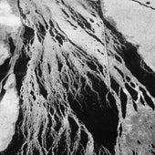 Reigning Cement von Jesse Draxler