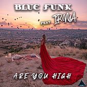 Are You High de Blue Funk