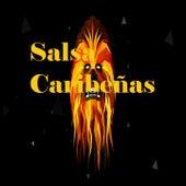 Salsa Caribeñas by la sonora carruseles, Orquesta La Selecta, Puerto Rican Power, Raphy Leavitt, Raul Marrero, Tito Nieves, Tommy Olivensia, Tony Vega, Victor Manuelle