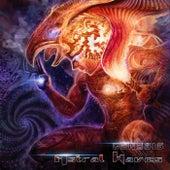 Genesis de Astral Waves