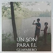Un Son Para El Guayabero by Bill Haley, Shelley Fabares, Carlos Puebla, Agustin Lara, Bola De Nieve, Jacques Brel, Ibrahim Ferrer, Charlie Rich