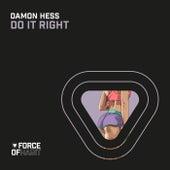 Do It Right von Damon Hess