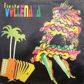 Fiesta Vallenata vol. 21 1995 von Fiesta Vallenata