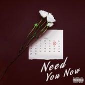 Need You Now de Kal