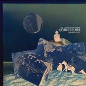 So Long for Now (Somni Remix) von Shrimpnose