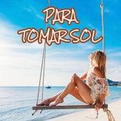 Para Tomar Sol by Various Artists