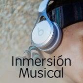 Inmersión Musical de Various Artists