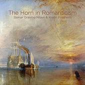 The Horn in Romanticism de Steinar Granmo Nilsen