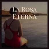 La Rosa Eterna by Los Panchos, The Diamonds, Charlie Rich, Rafael Farina, Olga Guillot, Porrina de Badajoz, Orlando Contreras, Don Gibson, Juanita Reina