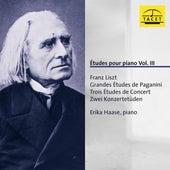 Études pour piano, Vol. 3 by Erika Haase