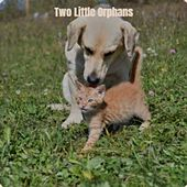 Two Little Orphans by Various Artists