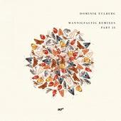 Mannigfaltig Remixes (Pt. 2) von Dominik Eulberg
