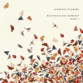 Mannigfaltig Remixes (Pt. 1) by Dominik Eulberg