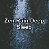 Zen Rain Deep Sleep de Calming Sounds