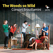 The Woods so Wild by Consort Brouillamini