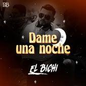 Dame Una Noche by Bichi
