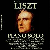 Liszt, Vol. 6 : Piano Solo (AwardWinners) von Various Artists
