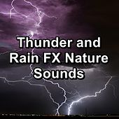 Thunder and Rain FX Nature Sounds by Rain Sounds Nature Collection