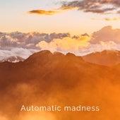 Automatic Madness von Jorge Ruano